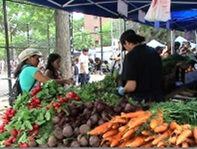Bronx Farmers Markets & Green Markets - Bronx NYC | BEST Farmers Markets / Green Markets in Bronx & shoppers' tips includes bronx farmers markets bronx green markets Mott Haven Farmers Market, Concourse Green Market, Coop City Farmers Market, Fordham Manor Green Market, Parkchester Farmers Market, City Island Farmers Market, Hunts Point Farmers Market, Claremont Village green markets farmers markets bronx nyc