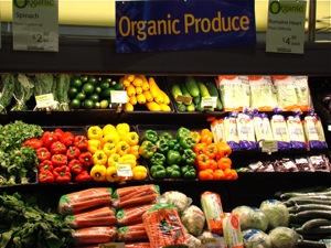 Organic Food in the Bronx & NYC | new york city organic food nyc organic food nyc nys organic food