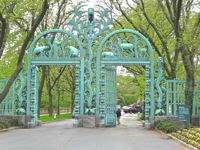bronx things to do bronx zoo photo things to do belmont fordham neighborhoods bronx things to do nyc